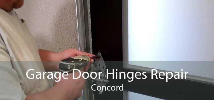 Garage Door Hinges Repair Concord