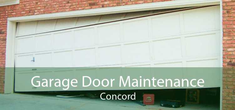 Garage Door Maintenance Concord