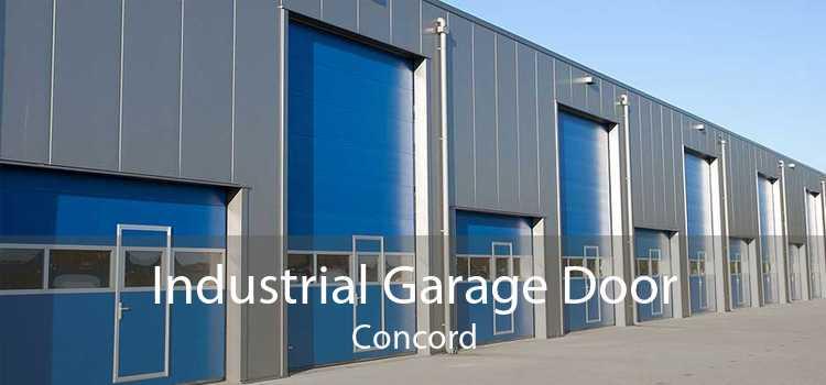 Industrial Garage Door Concord