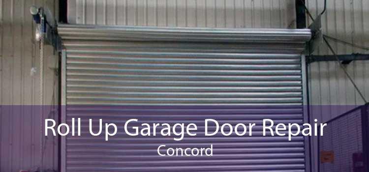 Roll Up Garage Door Repair Concord